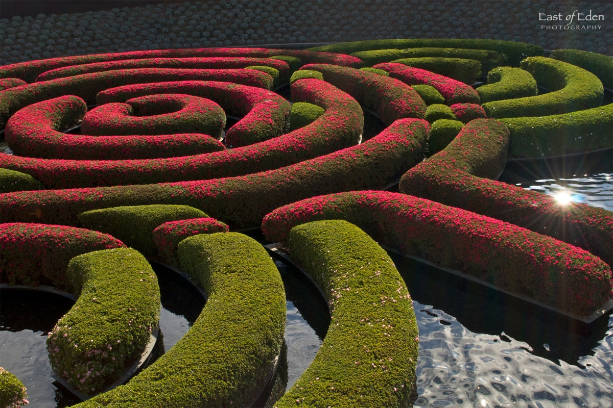 Getty Center Gardens: Living Work of Art