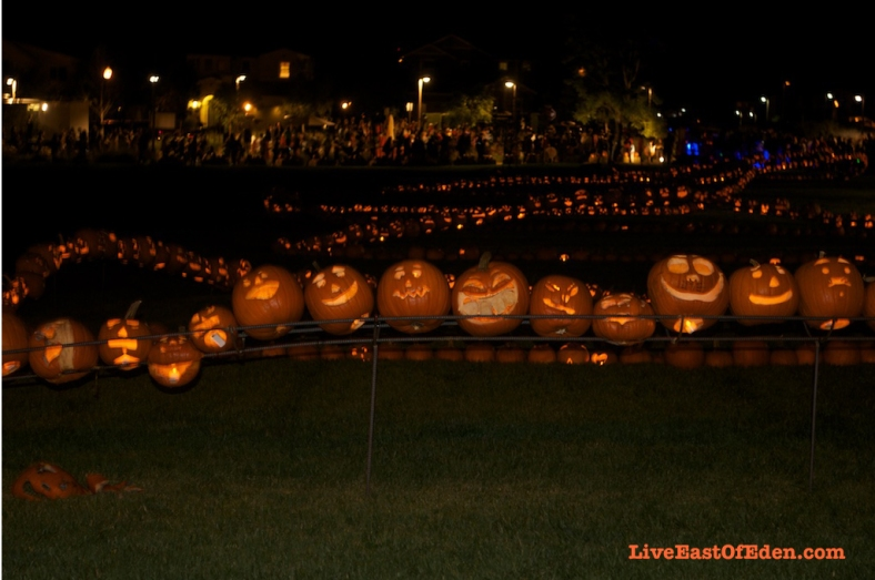 Halloween_Guinness_World_Record_Carved_Pumpkin_Line
