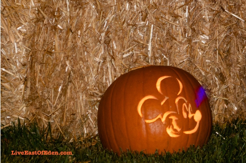 Halloween_Jack_O_Lantern_Carved_Pumpkin_Mickey_Mouse