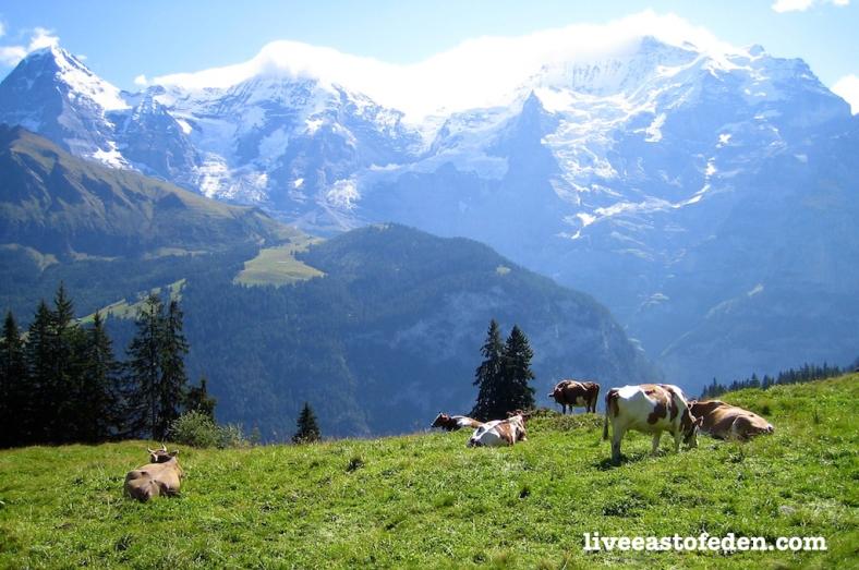 Eiger, Monch, Junfrau. Swiss Alps, Switzerland